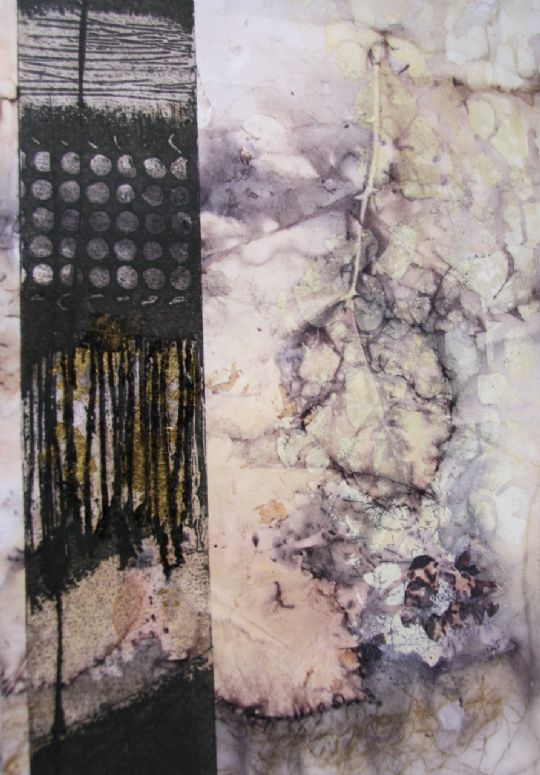 Collagraphs on Botanical Prints
